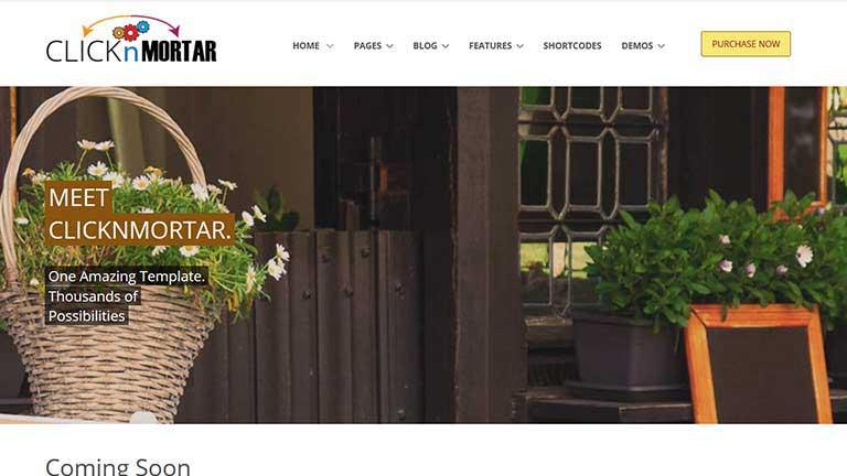 click N mortar Website Template Project